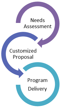 Custom program design process graphic
