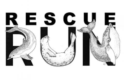 Rescue Run for the Marine Mammals