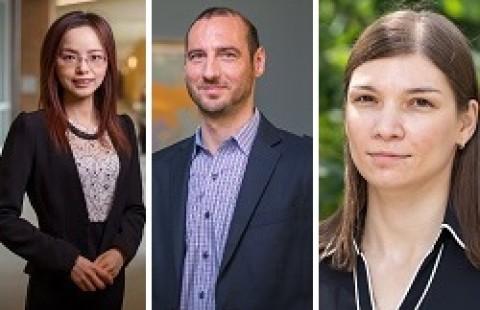 Zhaozhao He, Mihail Miletkov, Viktoriya Staneva