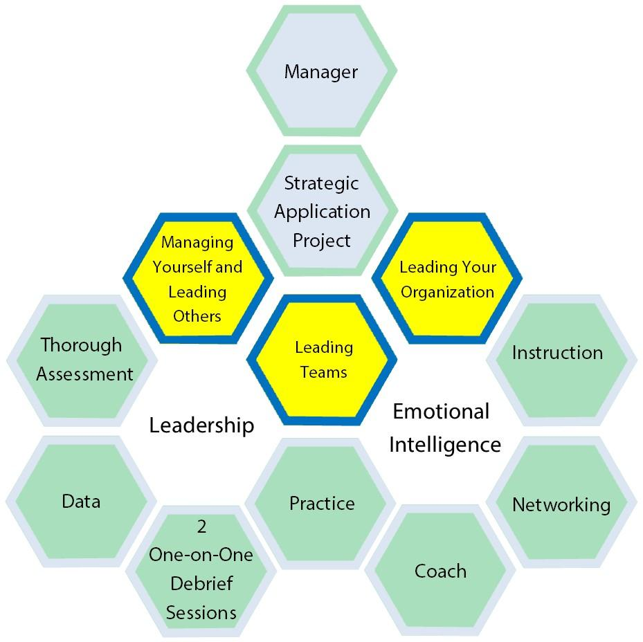 honeycomb organizational chart